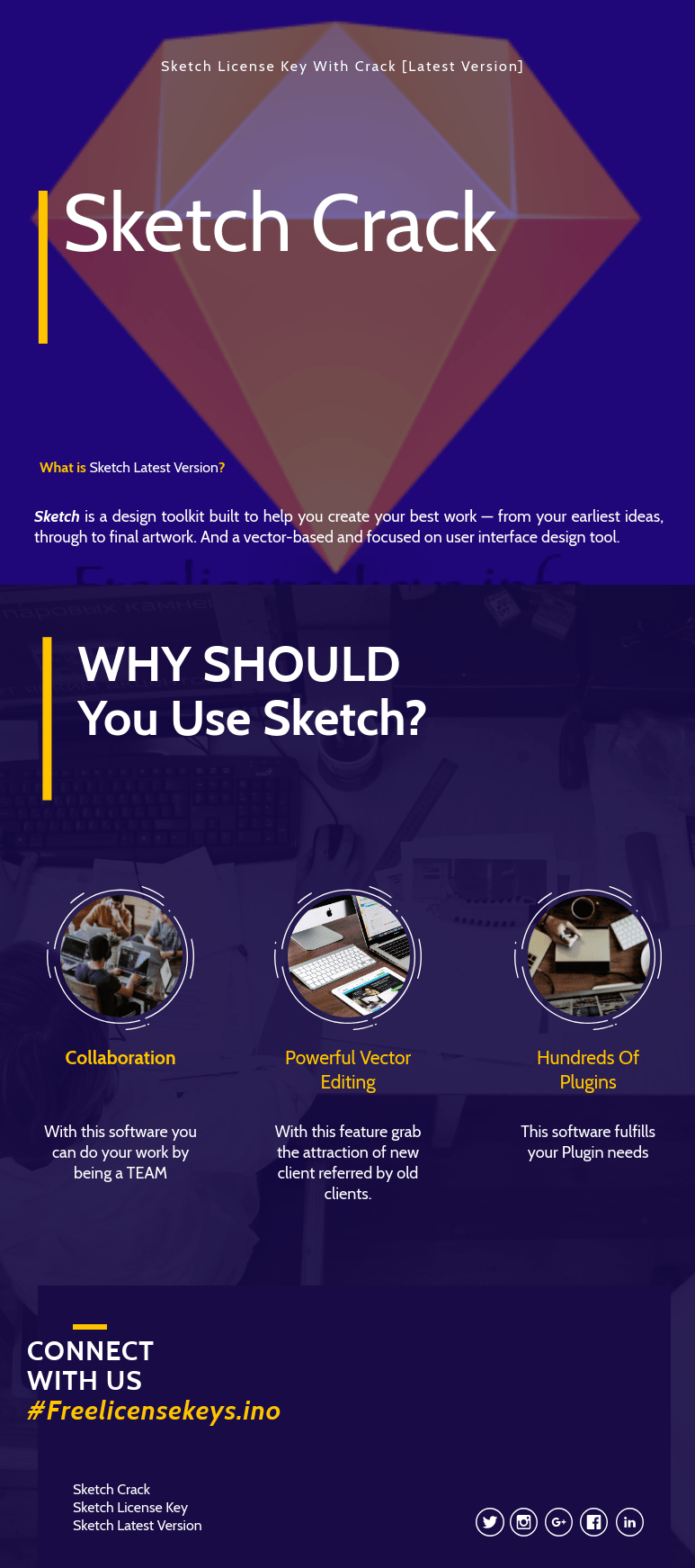 Infographic of Sketch License Key