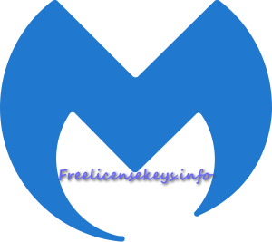 Malwarebytes 4.4.3.225 Crack With Keygen 2021 (Latest)
